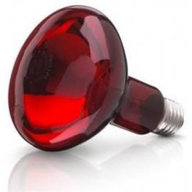 Żarówka podczerwieni Philips Infrared R95 100W